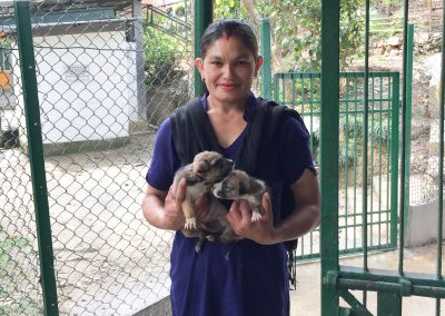 Kalpana-cleans-kennels-at-KAS