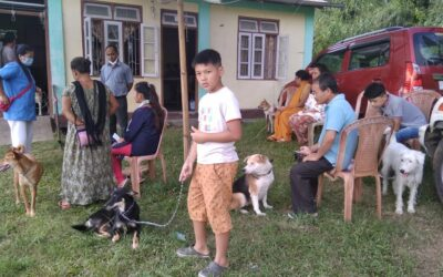 Village camp by Kalimpong Animal Shelter